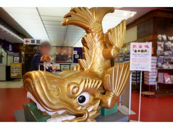 熱海城の金の鯱鉾と愛犬