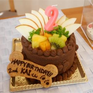 インスタ映え間違いなし!華やかで可愛いケーキ