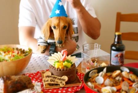 パーティーの主役、愛犬カイとお誕生日ケーキ!