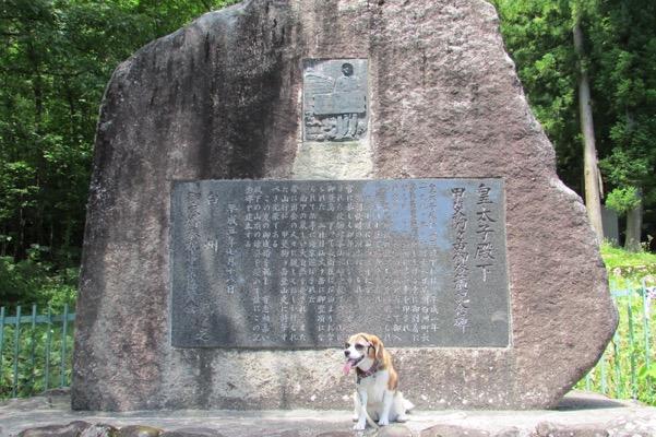 記念碑の前で座っている犬
