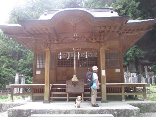 竹宇駒ヶ岳神社前に座っている犬
