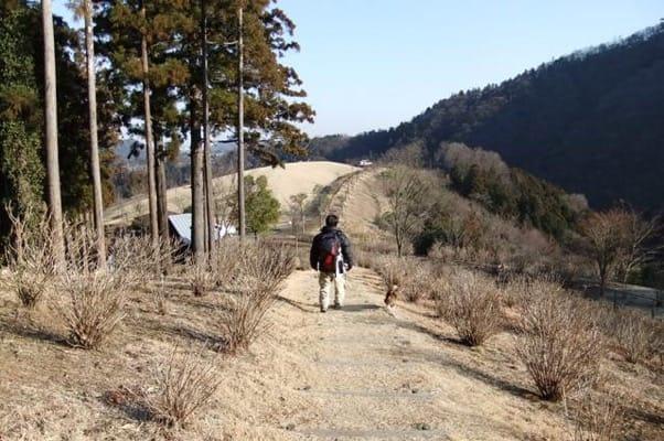 風の丘へ向かう遊歩道