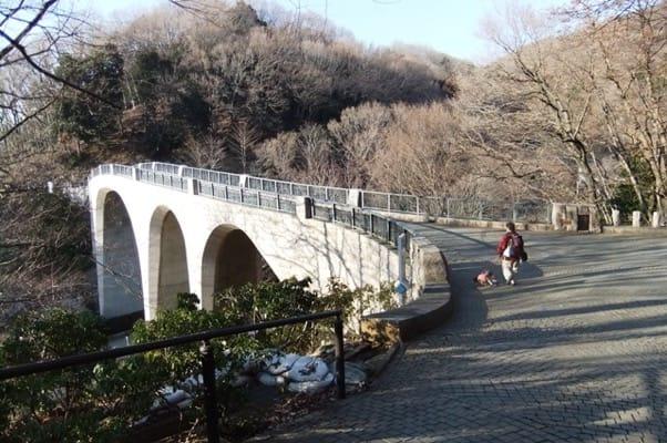 七沢森林公園森のかけ橋