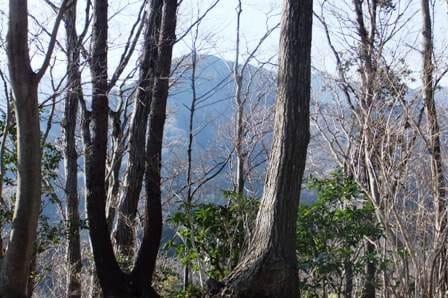 関東ふれあいの道から臨む大山