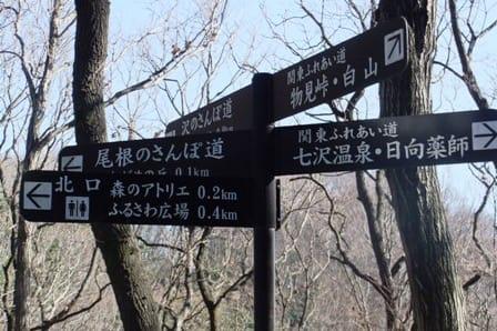尾根の散歩道と関東ふれあいの道分岐点