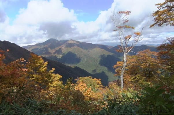 谷川岳登山道からの景色