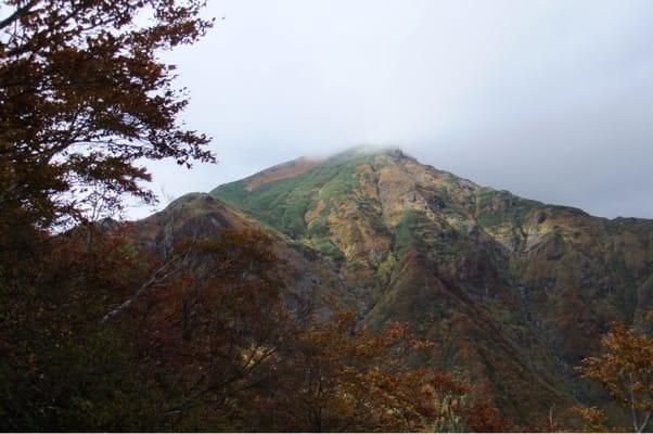 谷川岳登山道