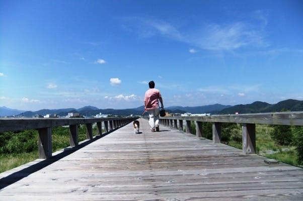 蓬莱橋を愛犬と渡る