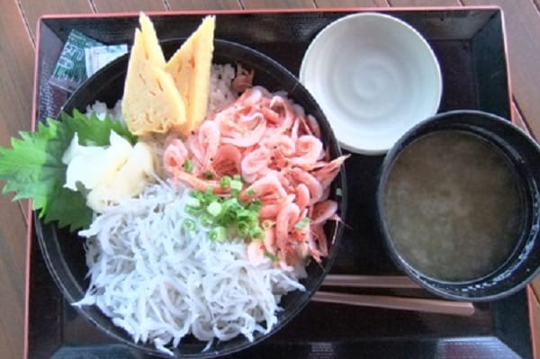 駿河湾沼津SAの海鮮丼