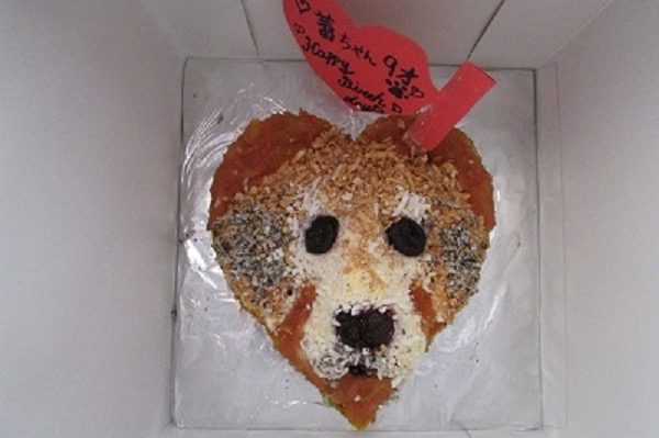 Sorrisoわんこケーキ