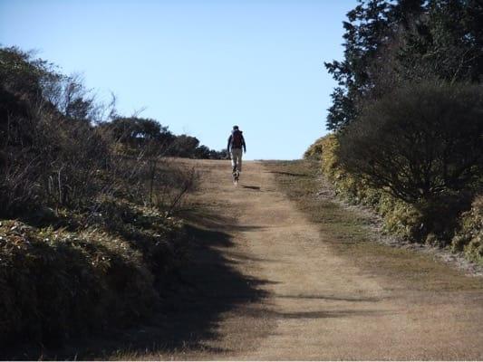 金冠山登山道