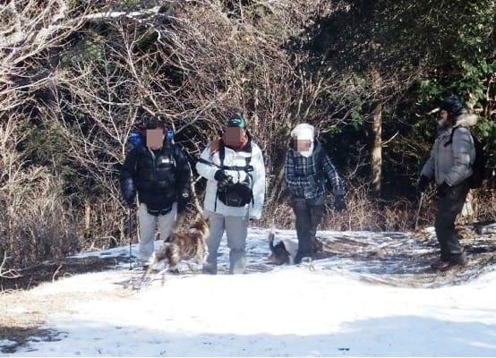雪が残る金冠山登山道