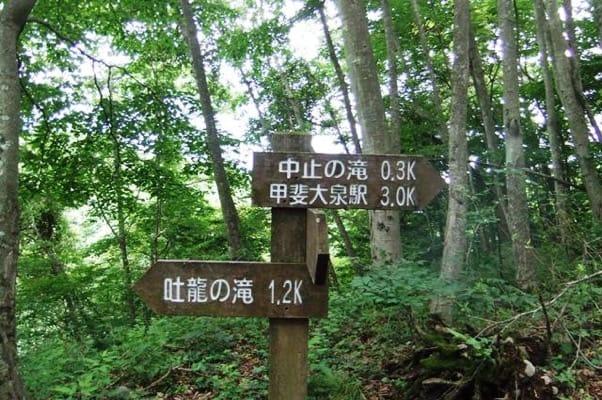 中止の滝ハイキングコースの道標