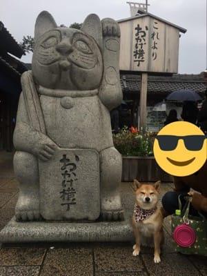 おかげ横丁のモチーフである招き猫と愛犬