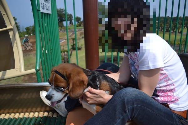 愛犬、ぐらんぱる公園にて