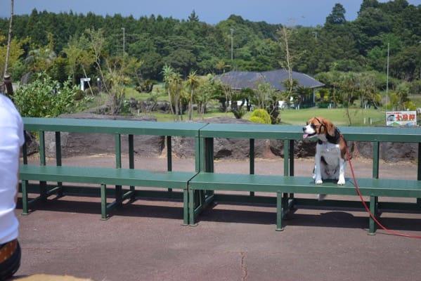 ぐらんぱる公園
