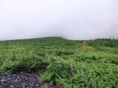 宝永山ルート
