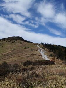 八島ヶ原湿原ハイキングコース