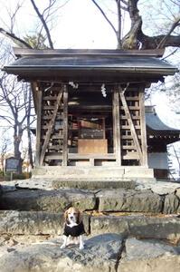川中島古戦場跡公園 旧八幡社