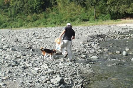 水無川での愛犬