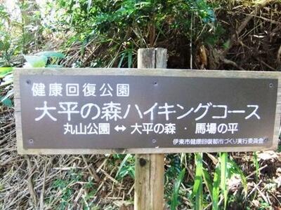 丸山公園の看板