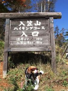 愛犬、富士見パノラマリゾートにて