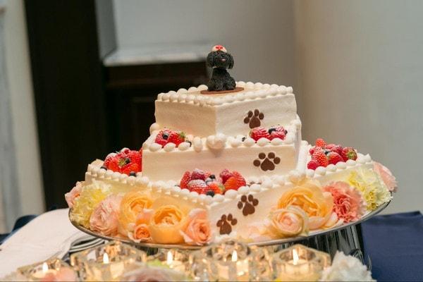 ウェディングケーキの愛犬