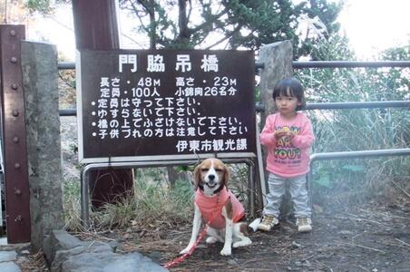 孫と愛犬、城ヶ崎ピクニカルコース吊り橋