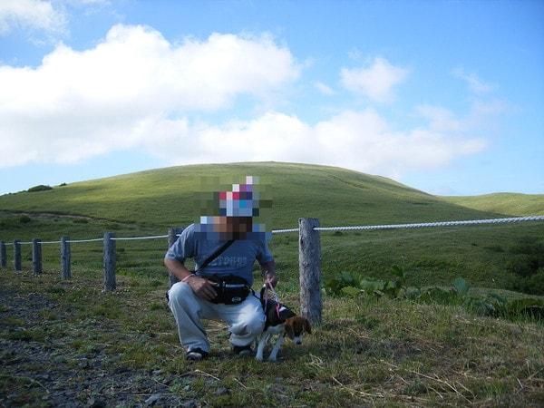 礼文島猫岩へ向かうハイキングコース