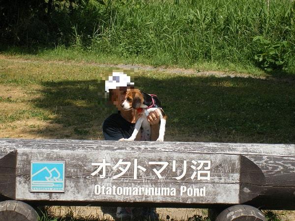 利尻島オタトマリ沼