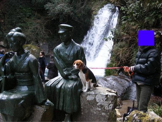 河津七滝:初景滝