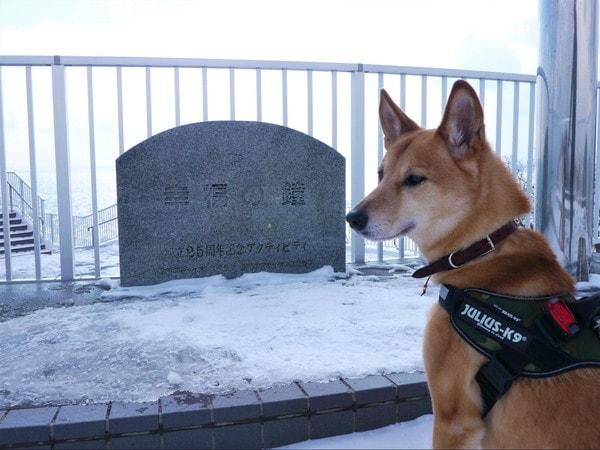 地球岬 幸福の鐘と愛犬