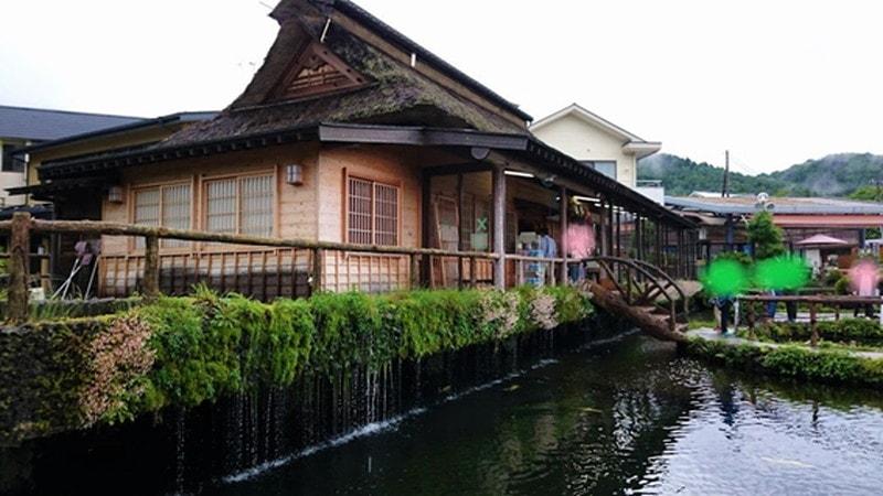 水車小屋から見た忍野八海鯉の池