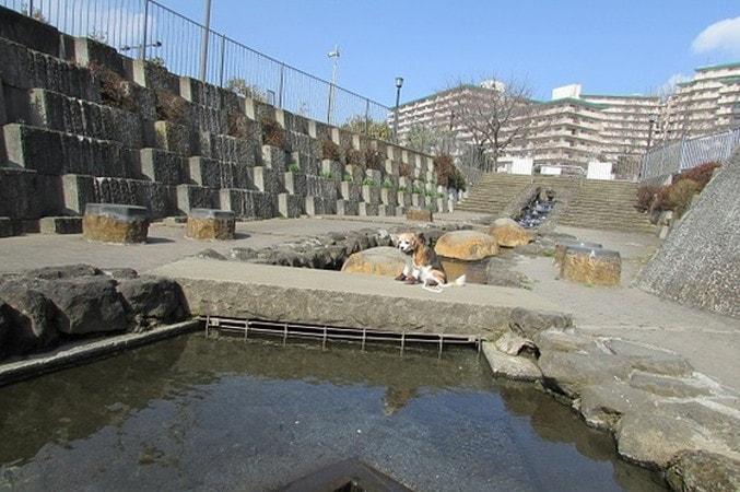 海老名市北部公園