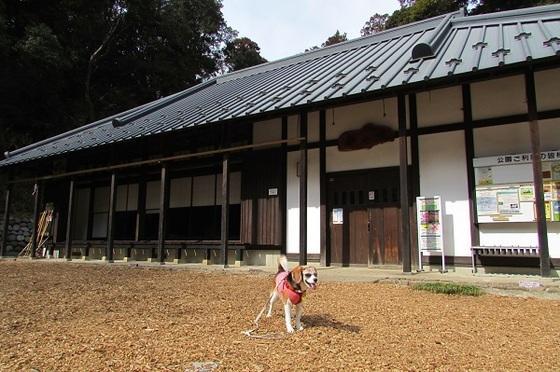 茅ヶ崎里山公園谷の家