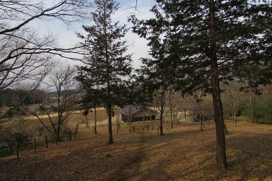 茅ヶ崎里山公園夕映えの丘