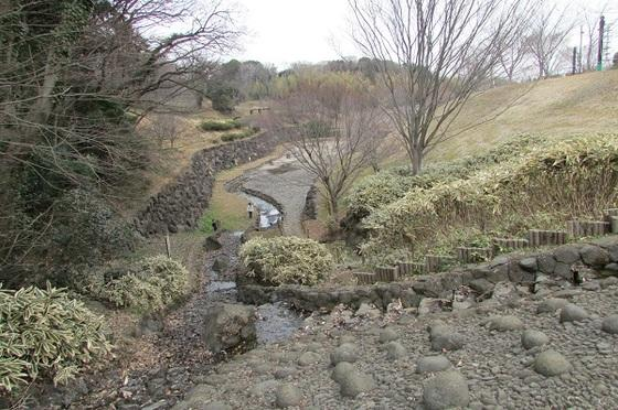 茅ヶ崎里山公園中ノ谷池