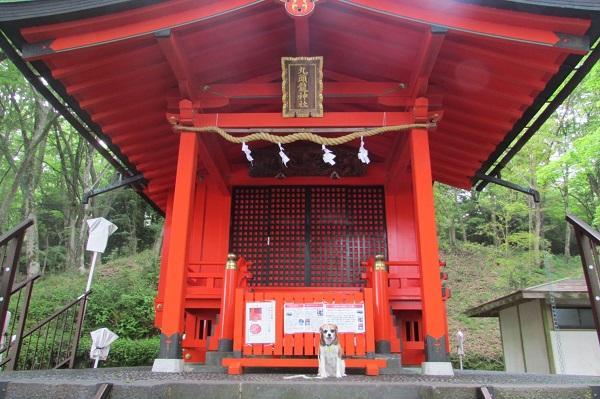 箱根 九頭龍神社