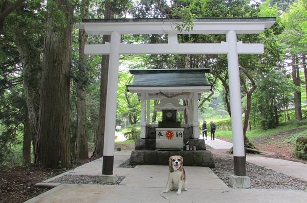 箱根 白龍神社