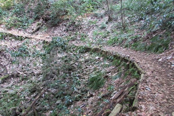 津久井湖城山公園ハイキングコース