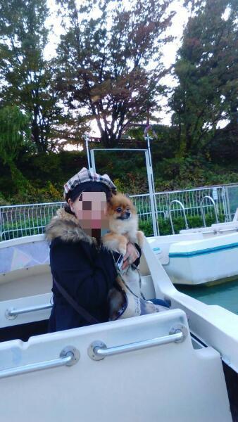 西武園ゆうえんち お船の乗り物に乗る愛犬