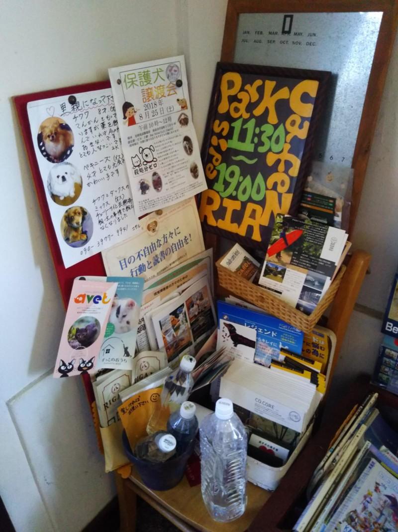 犬に関する資料や本がいっぱい!RAINにて。
