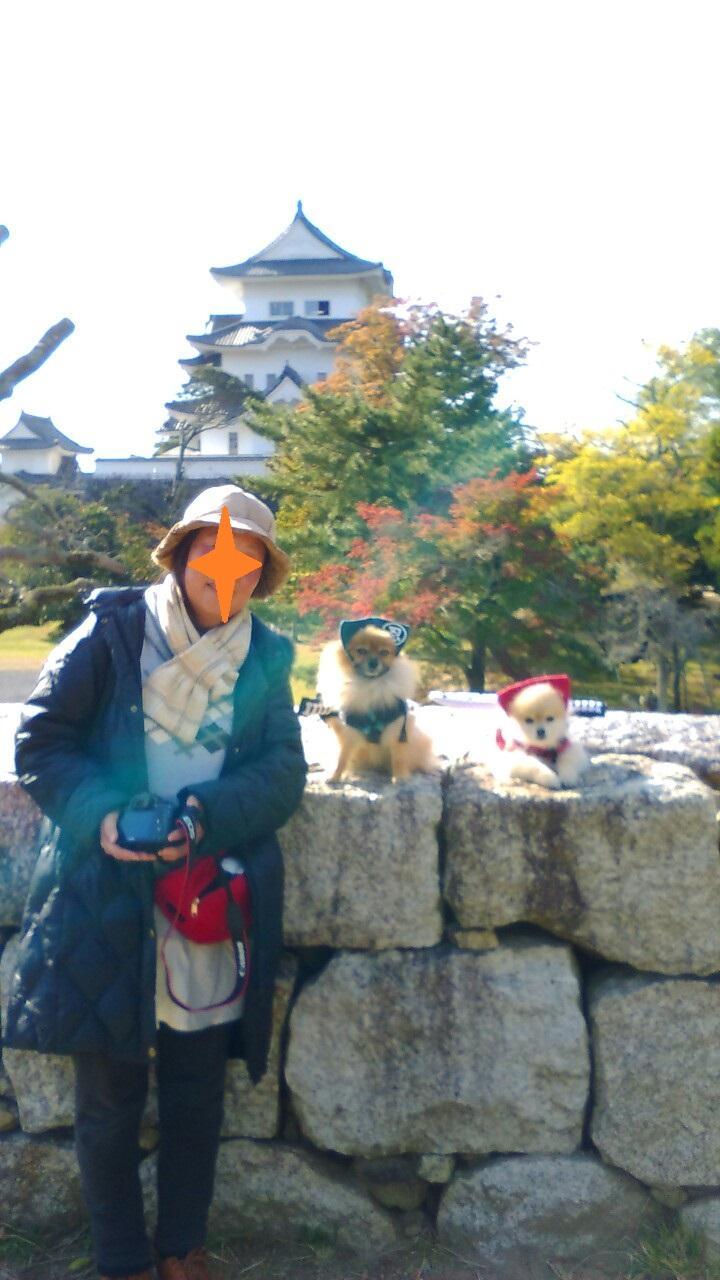 伊賀上野城の天守閣と愛犬