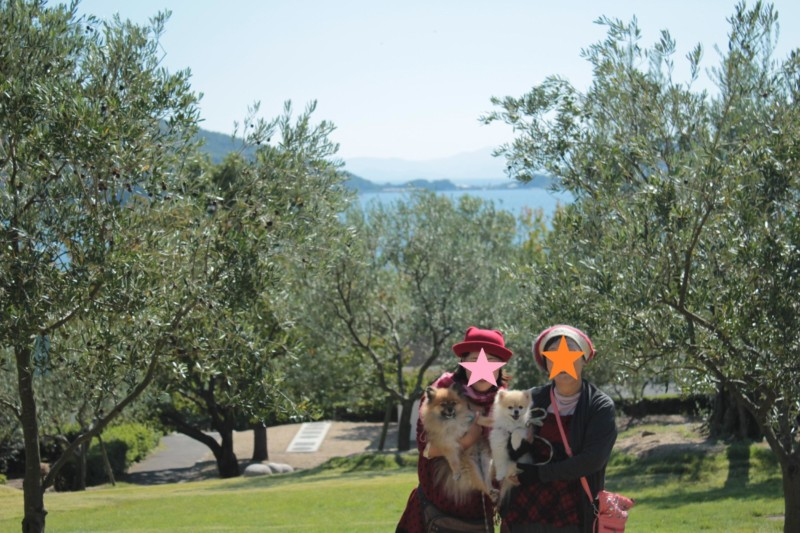 オリーブ公園で愛犬と記念写真