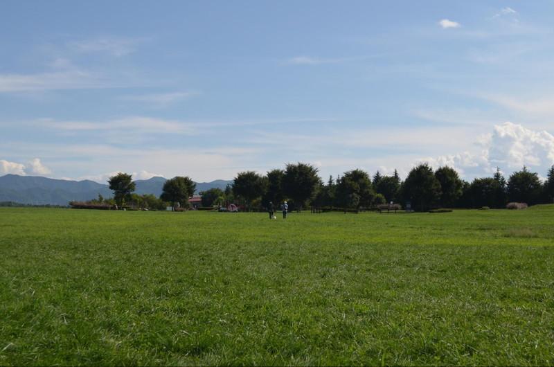 国営アルプスあづみの公園の広大な芝生広場