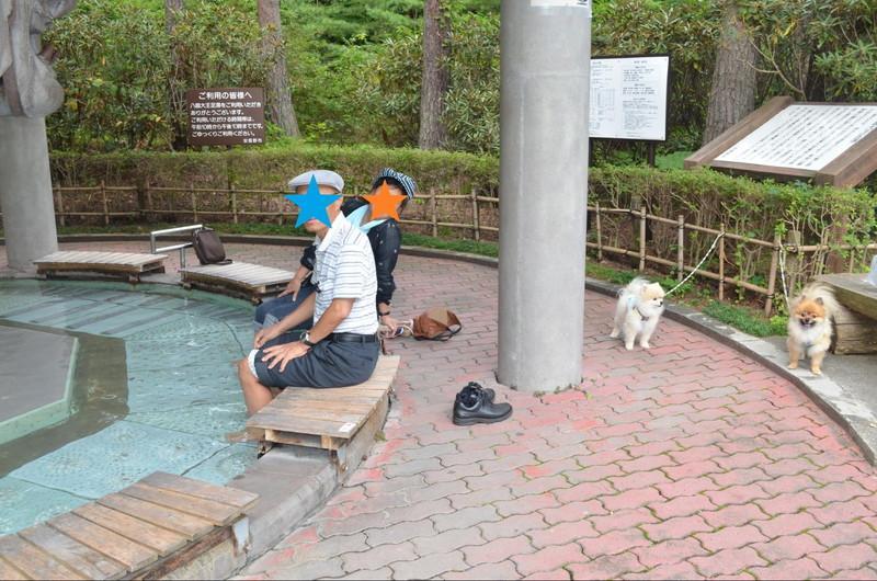 足湯につかる父母とそれを待つ愛犬