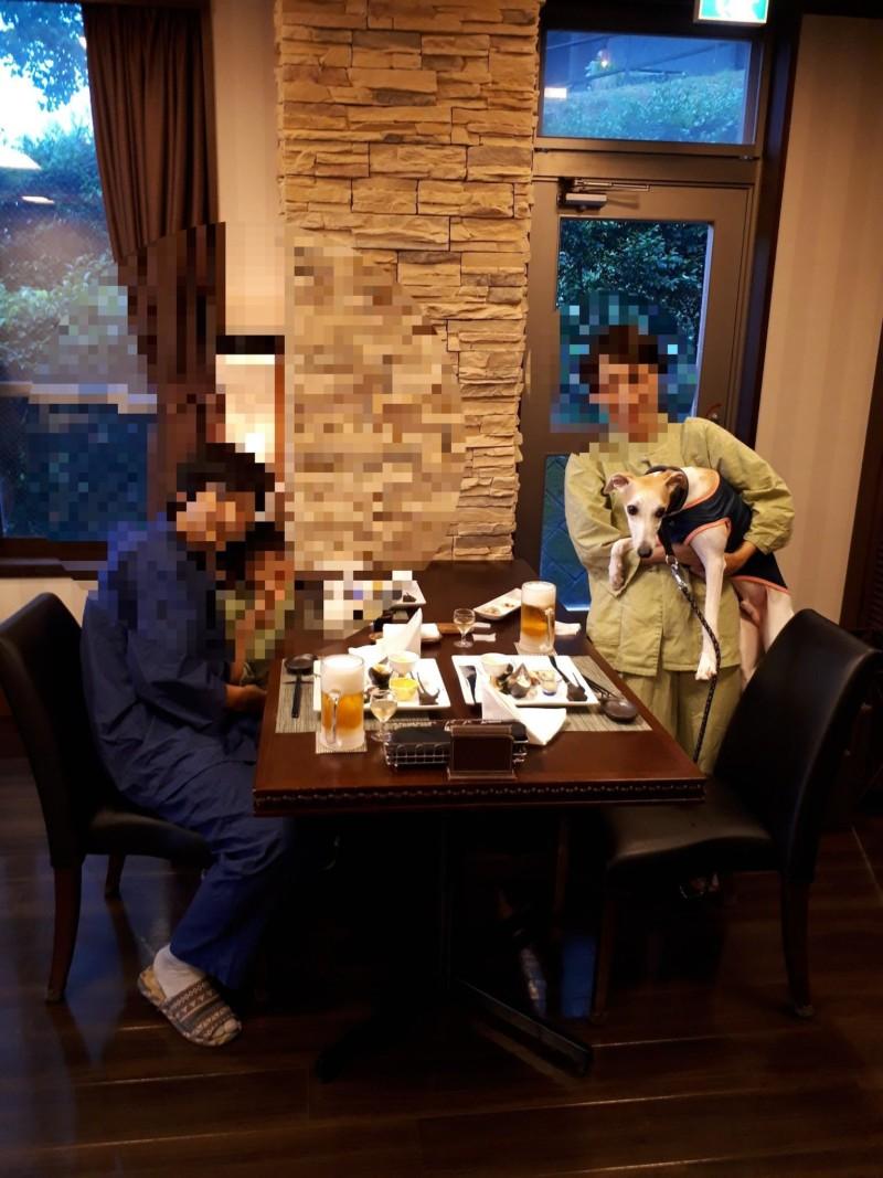 愛犬のお宿の夕食