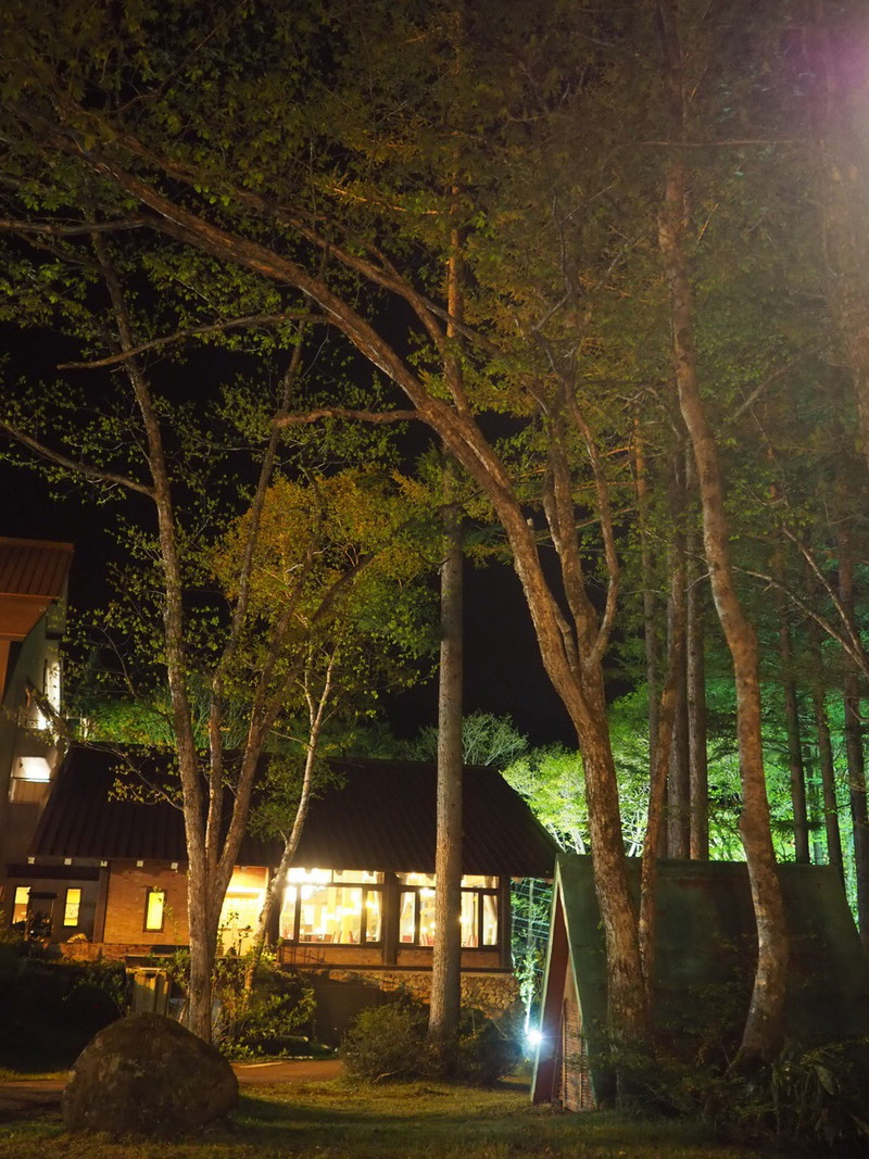 夜のライトアップされた高山わんわんパラダイスホテルの外観