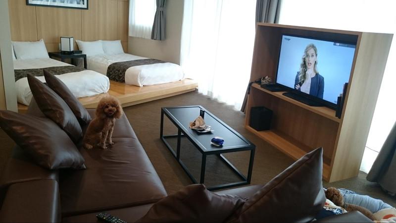 ビワドッグのフォースタイプの部屋。奥にもう一つベッドルームがあります