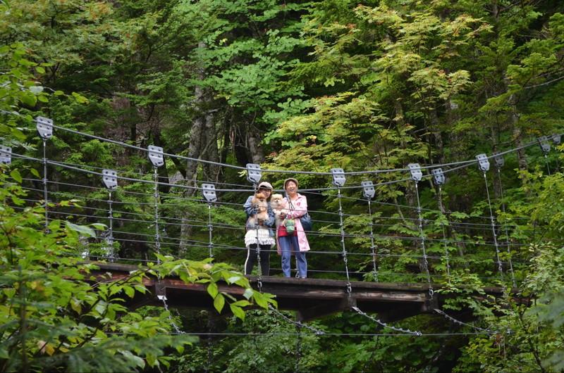 滝の上にかかる橋で愛犬と記念撮影